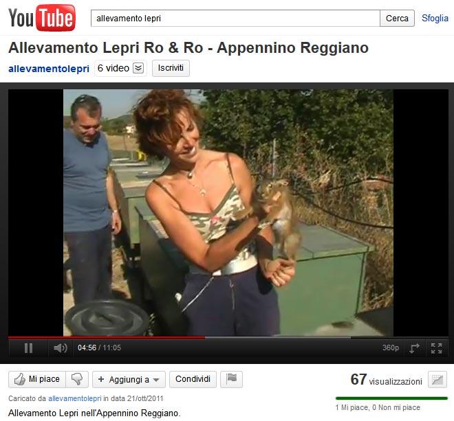 Allevamento Lepri su YouTube